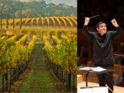 A vineyard scene next to a conductor of an orchestra