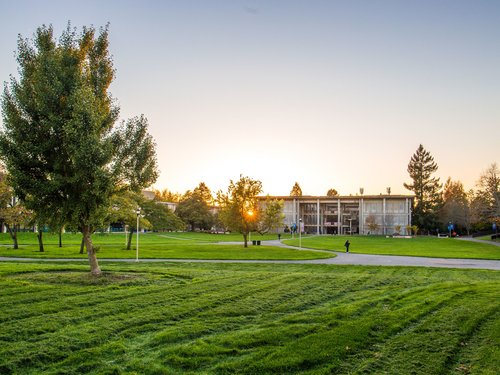 Salazar lawn and Stevenson building