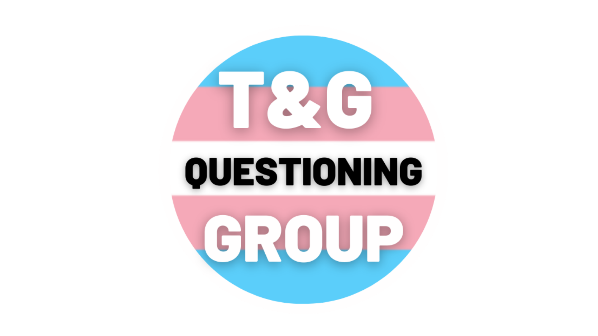 The T&G Questioning Group logo featuring pink and blue stripes