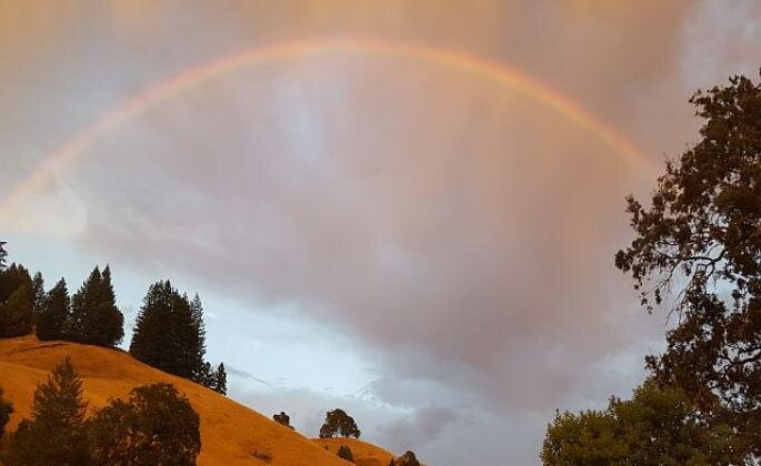 A faint rainbow above some wooded hills and in front of gloomy clouds
