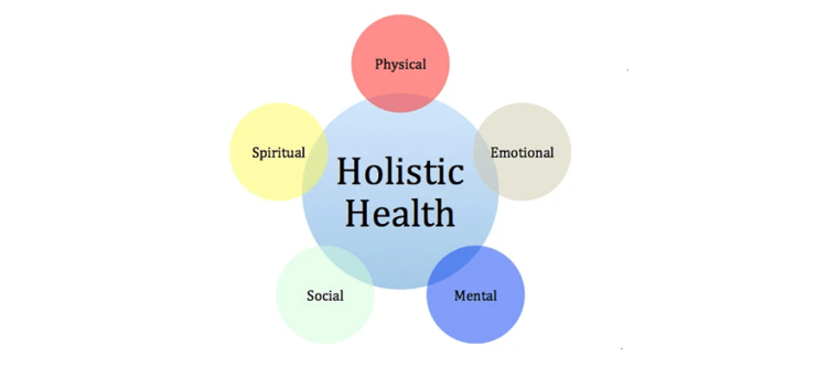 Colorful venn diagram graphic of the five holistic health quadrants
